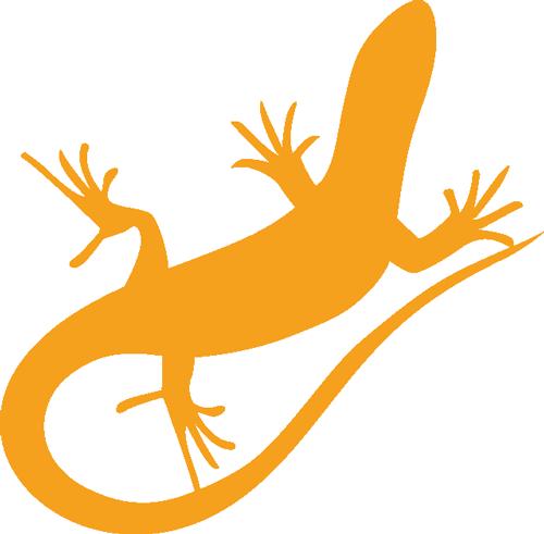 pashmin werbeagentur logo